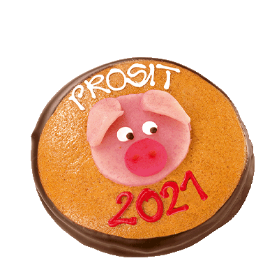 Lucky Pig New Year Coin